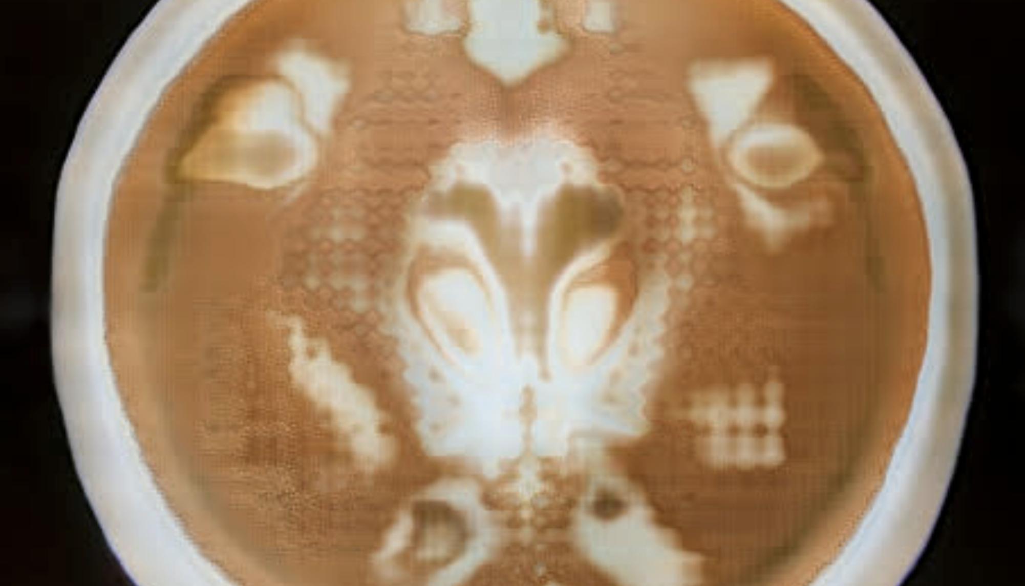 Kann ein Computer ein neues Latte-Art-Kunstwerk kreieren?