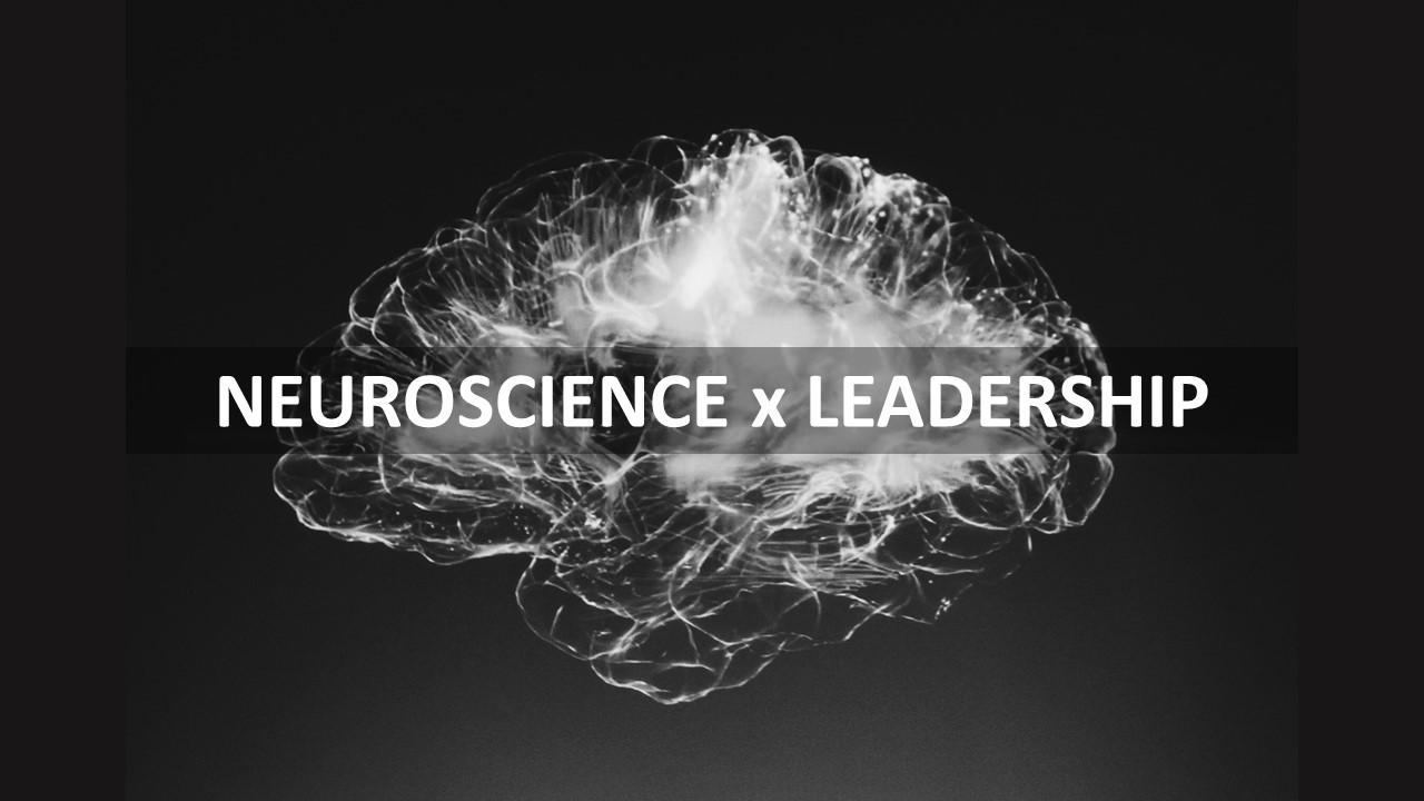 Wo beginnt Führung? – Und was Neurowissenschaften damit zu tun haben.