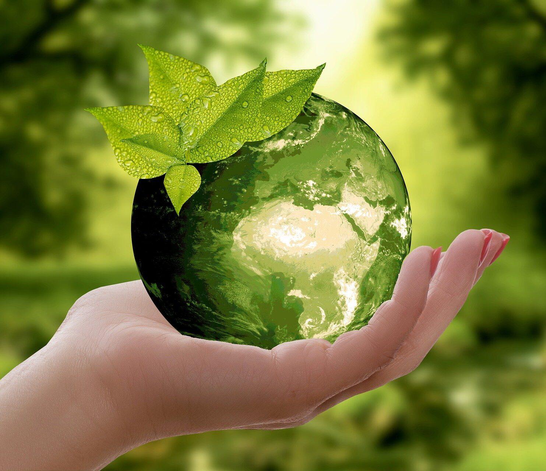 Sustainable Leadership – Verantwortung übernehmen