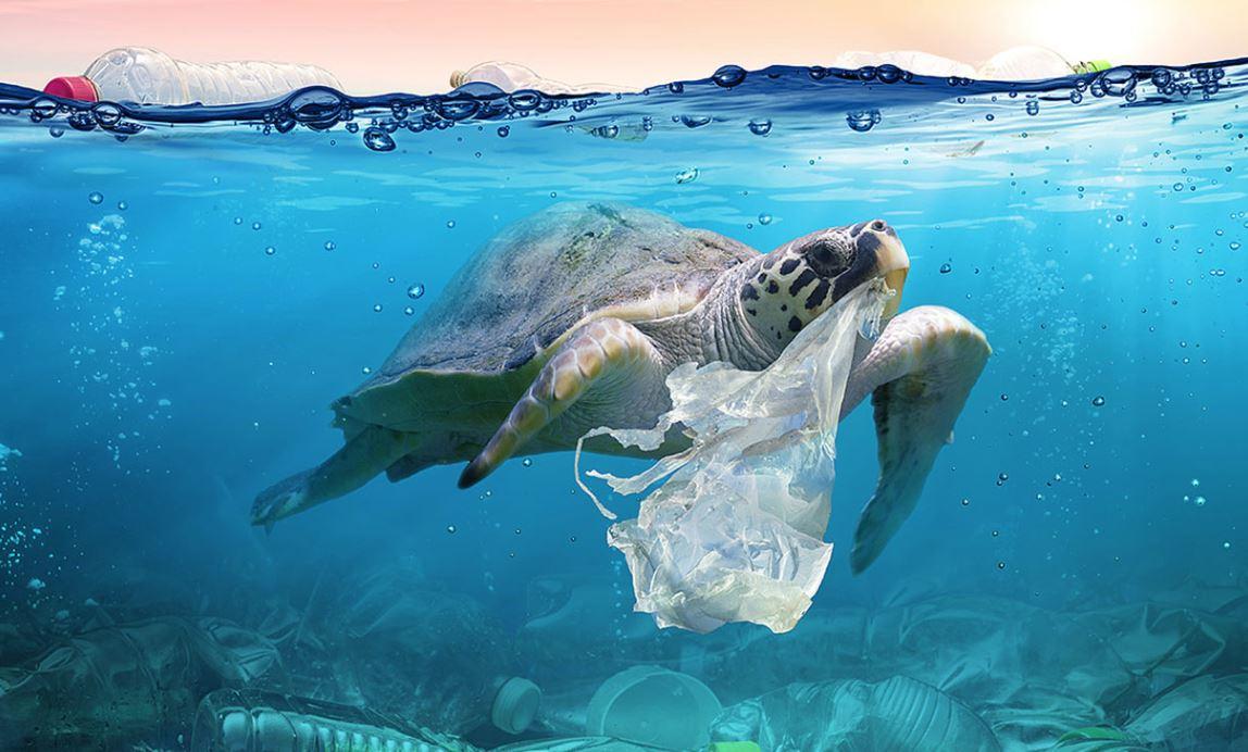 Call for Innovation: Futury sucht Lösungen zur Abfallreduktion in der Wertschöpfungskette im Bereich Food Packaging
