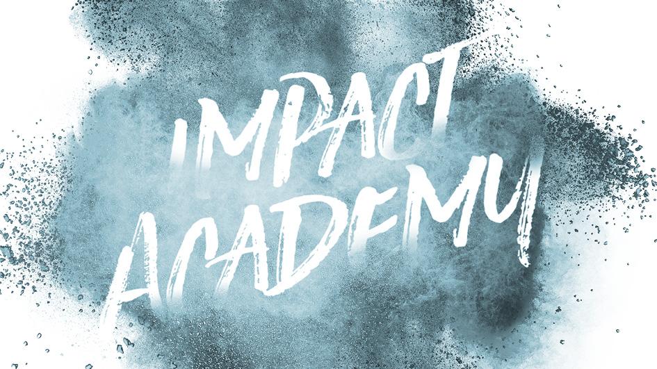 SEIF Impact Academy – Jetzt anmelden!