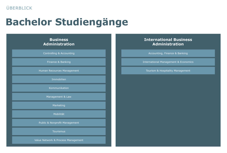 Die Bachelor Studiengänge an der HSLU Wirtschaft